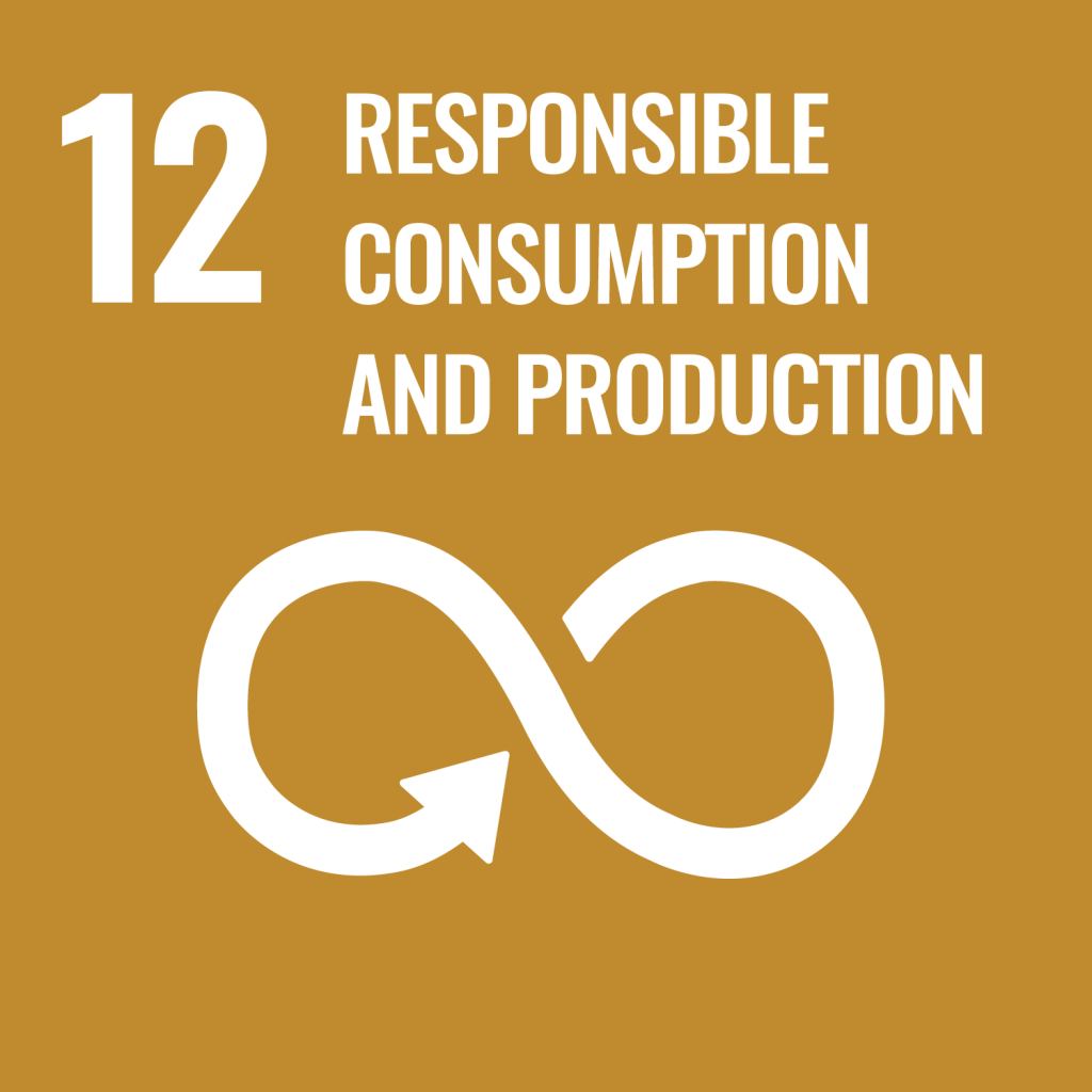 #12 Responsible consumption and production