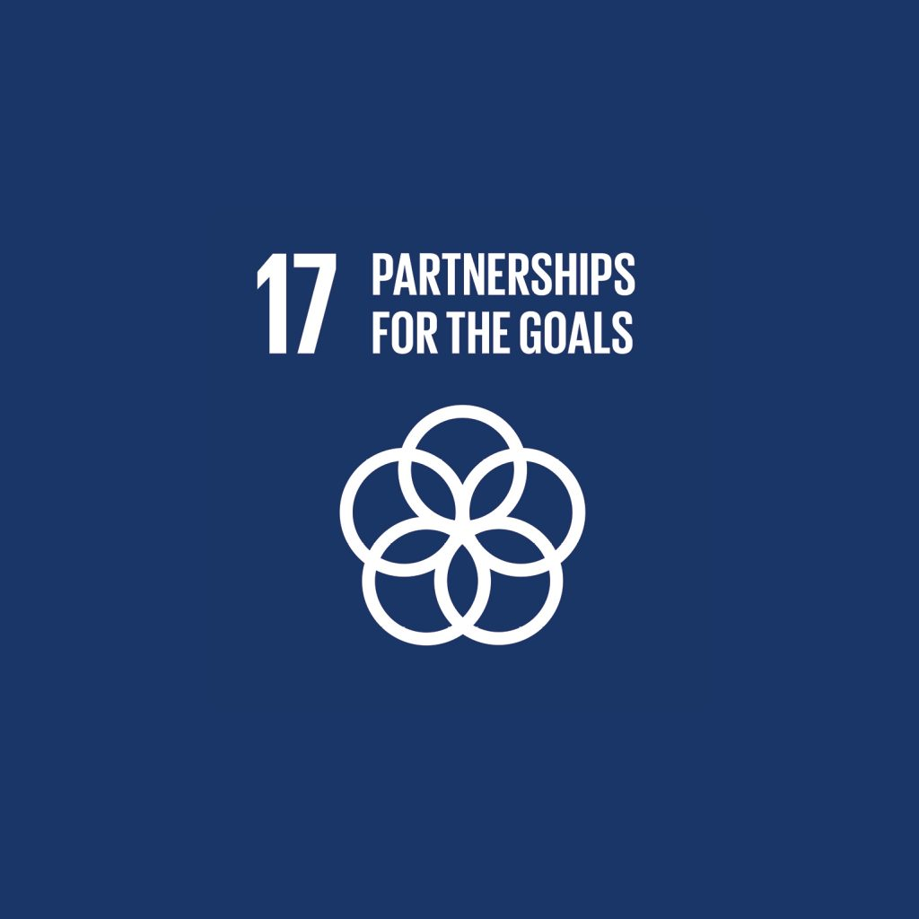 #17 Partnerships for the goals